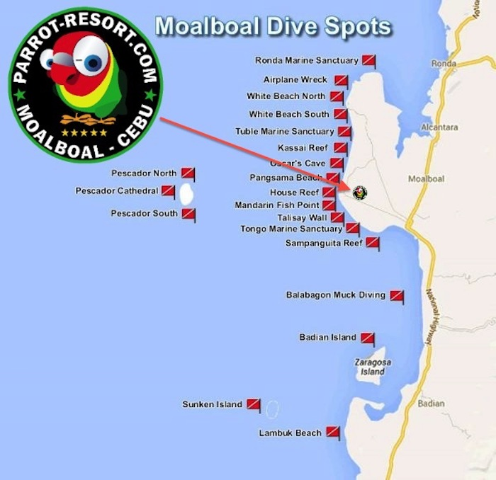 Divin and Diveshops in Moalboal